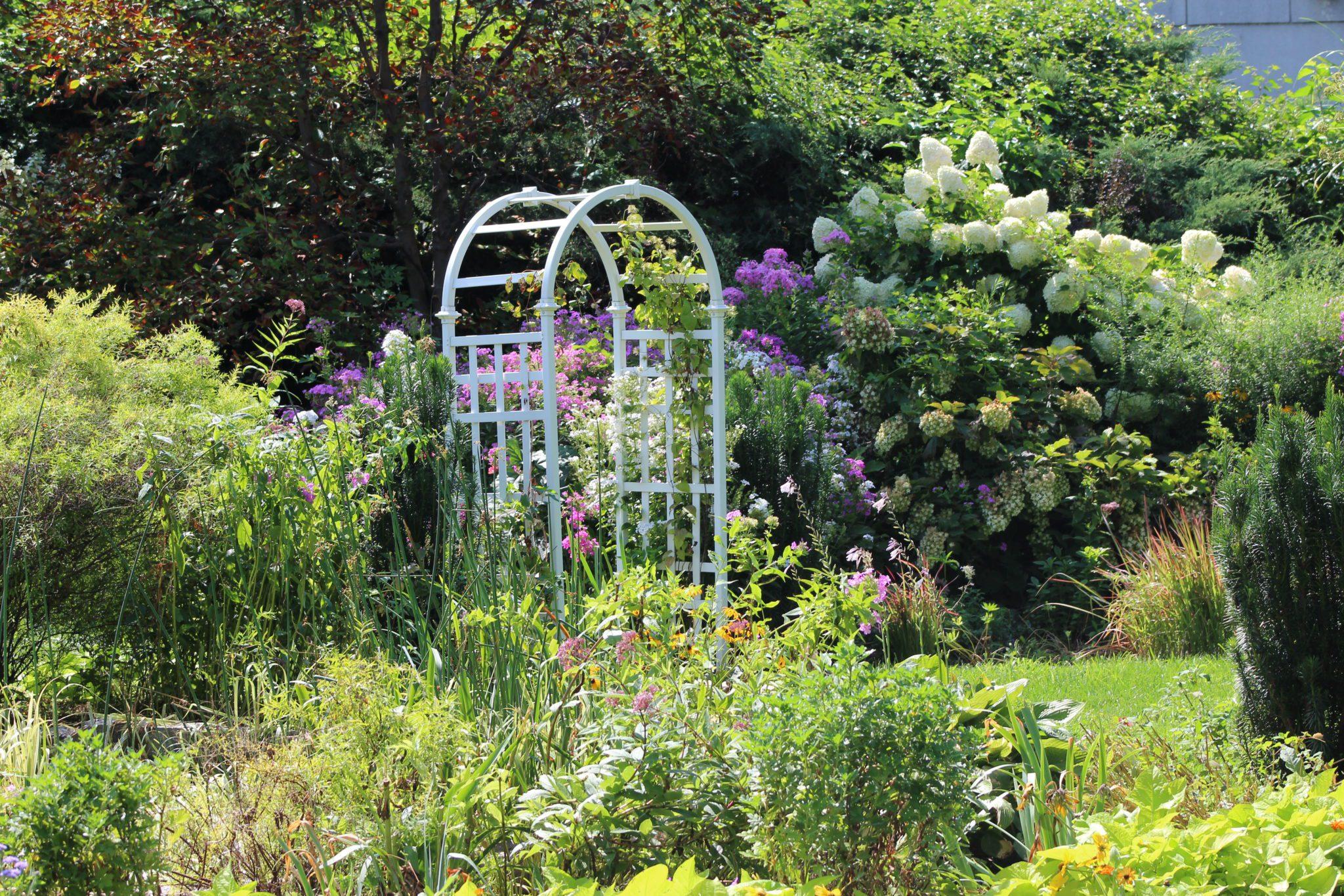 Fantastic Queens Botanical Garden Pattern Home Gallery